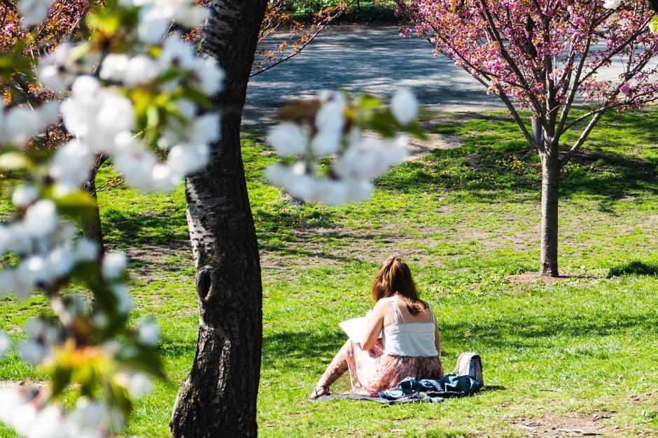 Succesvolle satisficer: Katja Schuurman snapt hoe je psychologisch gelukkig wordt